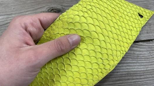 Détail peau de cuir de poisson jaune mat Tilapia bijoux accessoire maroquinerie cuirenstock
