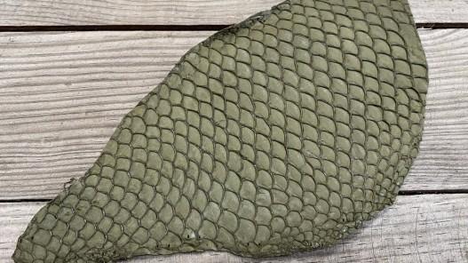 Peau de cuir de poisson tilapia vert kaki mat travail du cuir exotique Cuir en stock