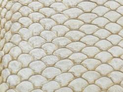 Détail écailles cuir de poisson tilapia beige naturel mat Cuir en stock