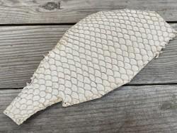 Peau de cuir de poisson tilapia exotique maroquinerie bijoux Cuirenstock
