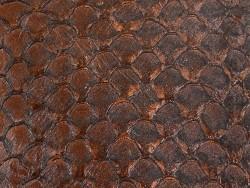 Détail cuir de poisson tilapia écailles naturelles marron satiné Cuir en Stock