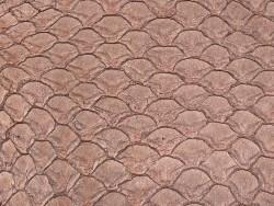 Détail cuir de poisson tilapia brun satiné maroquinerie bijoux accessoire Cuir en stock
