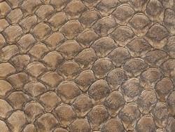 Détail écailles cuir de poisson tilapia brun tabac satiné Cuir en Stock
