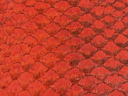 Détail écailles cuir de poisson tilapia rouge satiné bijoux accessoire maroquinerie Cuir en Stock