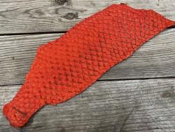 Peau de cuir de poisson tilapia rouge satiné exotique écailles naturelles cuir en stock