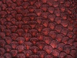 Détail écailles cuir de poisson tilapia bordeaux satiné Cuir en stock