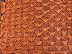 Détail écailles cuir de poisson tilapia terracotta satiné