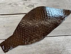 Peau de cuir de poisson tilapia brun foncé glossy cuirenstock