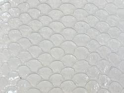 Détail écailles cuir de poisson tilapia blanc glossy brillant Cuir en stock