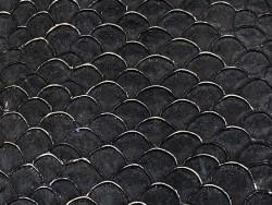 Détail écailles peau de cuir poisson tilapia noir mat métallisé argent Cuir en Stock