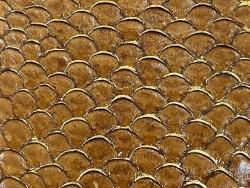 Détail écailles cuir de poisson tilapia gold fauve camel métallisé doré glossy Cuir en Stock