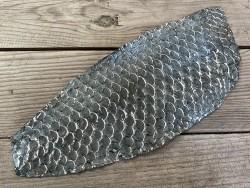Peau de cuir de poisson tilapia gris glossy métallisé argent maroquinerie bijoux accessoire cuir en stock