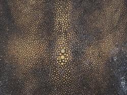 Peau de galuchat brun foncé nuancé perle centrale luxe Cuir en stock
