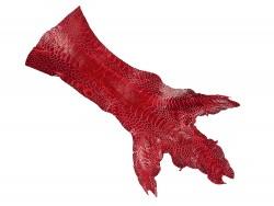Peau de patte de coq poulet rouge vif luxe exotique Cuir en Stock