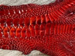 Détail grain de peau cuir exotique luxe rouge carmin Cuir en stock