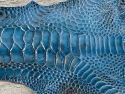 Détail grain de peau patte de coq poulet bleu turquoise luxe exotique cuir en stock