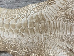 Détail grain peau cuir patte de coq poulet beige bijoux accessoire bracelet montre luxe exotique cuir en stock
