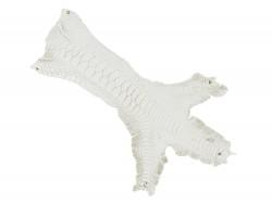 Peau cuir patte de coq blanc exotique luxe bijoux accessoire bracelet montre qualité Cuir en Stock