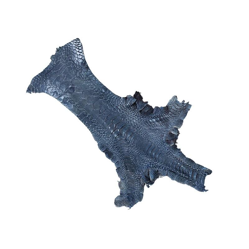 Peau cuir patte de coq poulet nacré bleu marine luxe exotique Cuir en Stock