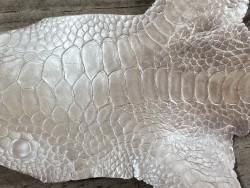 Détail grain de peau cuir patte de coq poulet exotique luxe Cuir en stock