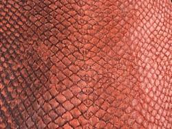 Détail écailles cuir peau poisson saumon naturel orange Cuir en Stock