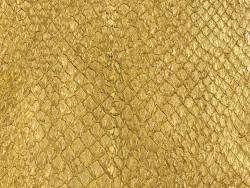 Détail écailles peau cuir poisson saumon jaune doré métallisé nacré Cuir en Stock