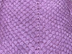Détail écailles peau cuir poisson saumon violet mat Cuir en Stock