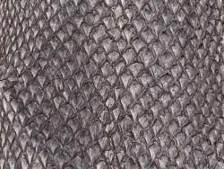 Détail écailles peau cuir poisson saumon brun mat Cuir en Stock
