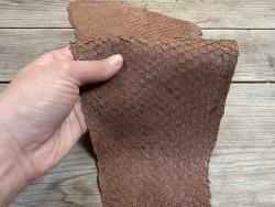 Peau cuir poisson Perche du Nil - Brun praliné - bijoux accessoire maroquinerie - luxe exotique - Cuir en stock