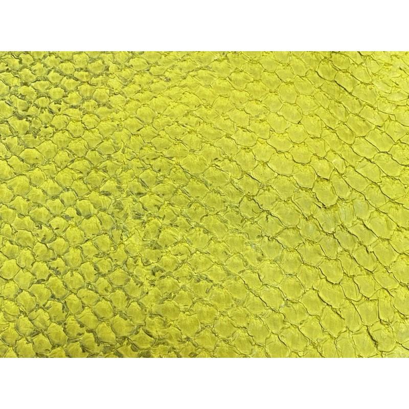 Détail écailles cuir de poisson - Perche du Nil - Jaune - Cuir en Stock