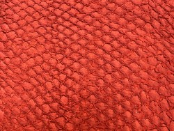 Détail écailles cuir de poisson - Perche du Nil - rouge mat - bijoux maroquinerie - luxe exotique - Cuir en Stock