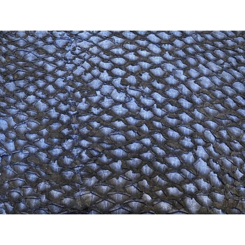 Détail écailles - cuir de poisson - Perche du Nil - bleu marine Cuir en Stock