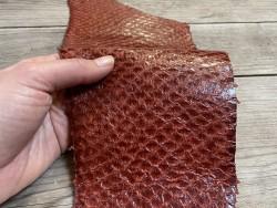 Peau de cuir de poisson - Perche du Nil - Terracotta - bijoux - maroquinerie - Exotique - Cuir en stock
