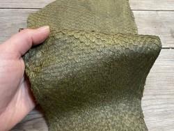 Peau de cuir de poisson - Perche du Nil - Vert kaki mat - luxe - exotique - bijou - maroquinerie - Cuir en stock
