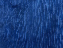 Détail grain de peau cuir de poisson requin bleu Cuir en stock