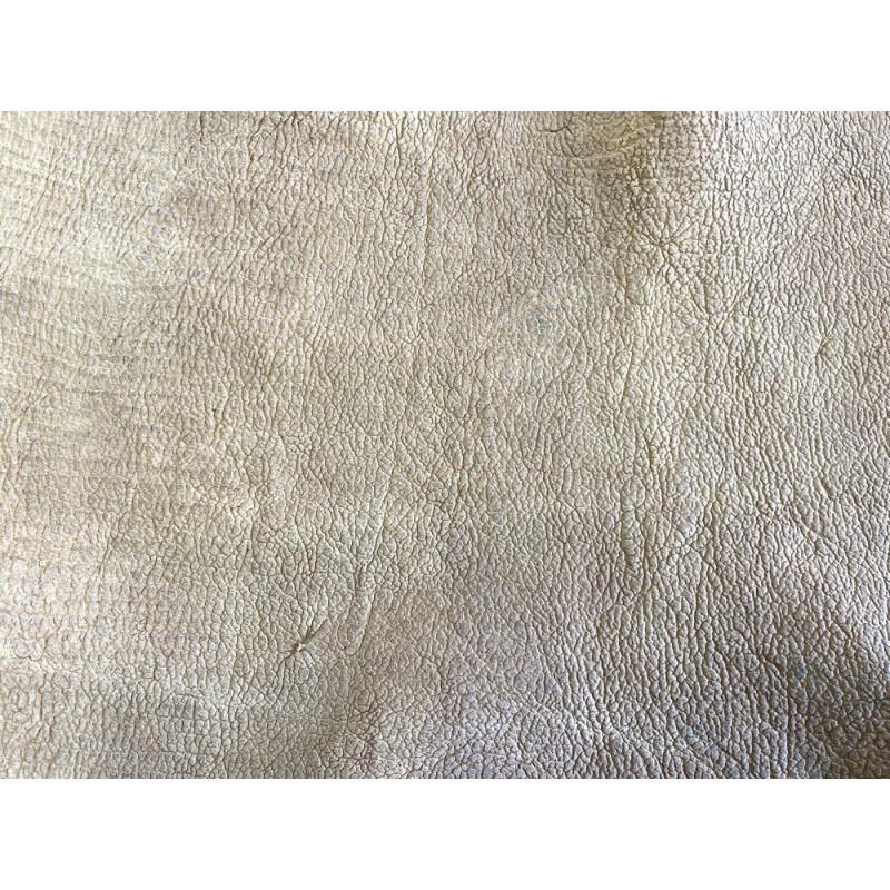 Détail grain de peau de cuir de poisson requin nubuck beige Cuir en Stock