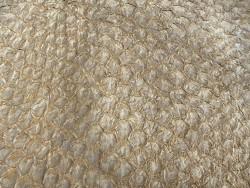 Détail écailles - cuir de poisson - Perche du Nil - beige sable - Cuir en Stock
