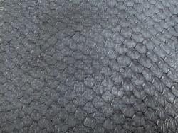 Détail écailles - cuir de poisson - Perche du Nil - noir semi-mat - Cuir en Stock