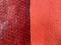 Duo peaux cuir poisson - détail écailles - Perche du Nil - rouge orangé - Cuir en Stock