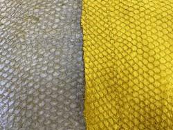 Détail écailles - cuir de poisson - Perche du Nil - vendu en lot - jaune - Cuir en stock