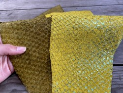 Exemple duo - cuir de poisson - Perche du Nil - vendu en lot - jaune - Cuir en Stock
