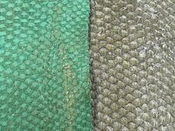 Détails écailles - cuir de poisson - vente en lot - peaux exotiques - vert - Cuir en Stock