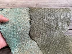 Lot de peaux exotique - camaïeu de vert - cuir poisson - Perche du Nil - bijoux accessoire maroquinerie - Cuirenstock