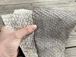 Duo peaux exotiques - cuir de poisson - Perche du Nil - lot de peaux - gris - bijou accessoire maroquinerie - Cuir en stock