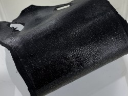 Détail perle - peau cuir galuchat - noir pailleté - grain poli - luxe exotique - Cuir en Stock