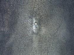 Détail perle central - grain poli - peau de galuchat - gris - bijou - gainage d'objet - Cuir en Stock