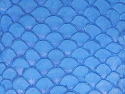 Cuir de poisson tilapia bleu mat écailles bijoux accessoire Cuir en stock