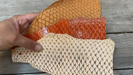 Lot de peaux de cuir de poisson tilapia - orange - soldes - bijou - accessoire - incrustation - Cuir en Stock