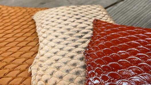 Lot de peaux de cuir de poisson tilapia - orange - soldes - bijou - accessoire - incrustation - Cuirenstock