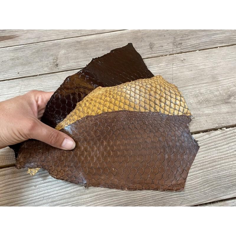 Lot peaux cuir de poisson tilapia - camaïeu de brun marron - soldes - bijou - accessoire - incrustation - Cuir en Stock